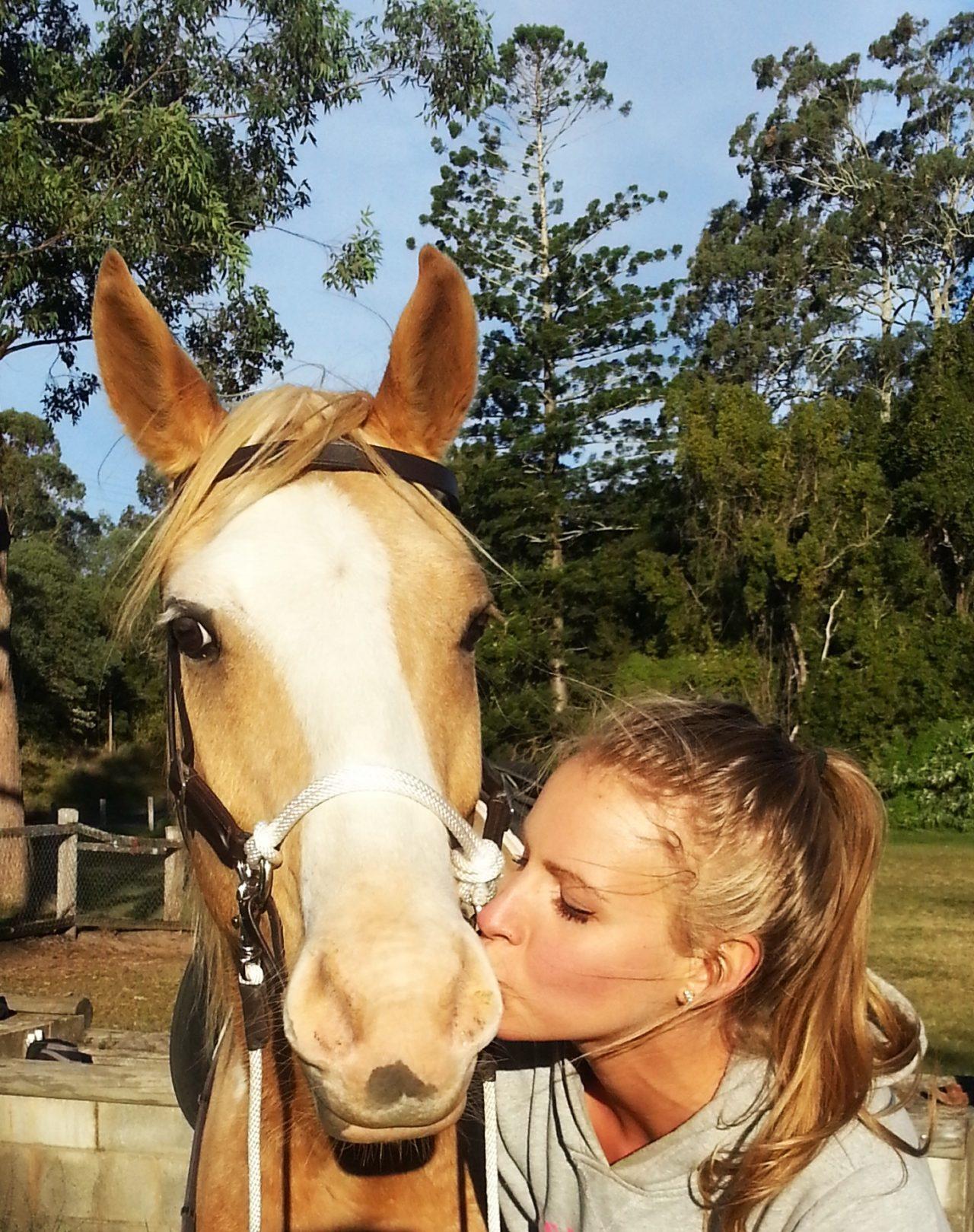 Portrait artist with Quarter Horse Cuda