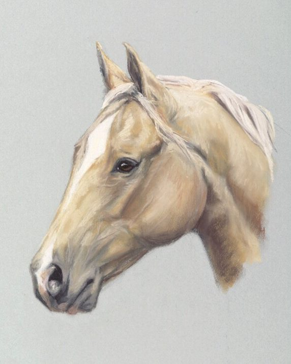 https://www.customhorseportraits.com/wp-content/uploads/IMG_4579-e1555103872780.jpg