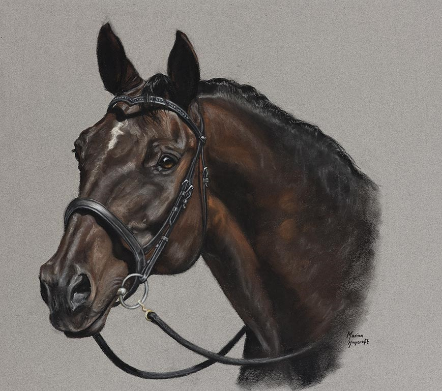 https://www.customhorseportraits.com/wp-content/uploads/M-HAYCROFT_005_Remmer_WEB.jpg