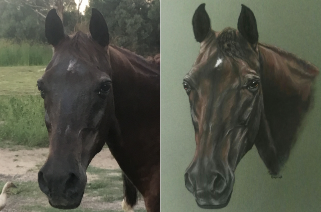 https://www.customhorseportraits.com/wp-content/uploads/PhotoGrid_1514952658170-e1539092778768-640x423.png
