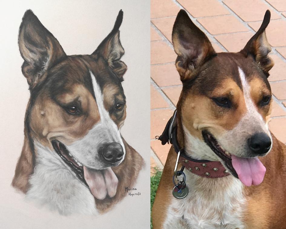 https://www.customhorseportraits.com/wp-content/uploads/Untitled-design-1.png