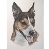 https://www.customhorseportraits.com/wp-content/uploads/Untitled-design2-160x160.png